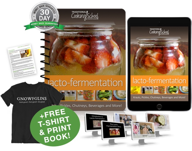 Lacto-Fermentation eBook or eCourse package
